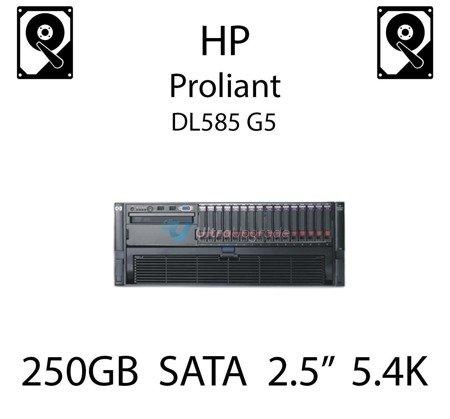 """250GB 2.5"""" dedykowany dysk serwerowy SATA do serwera HP ProLiant DL585 G5, HDD Enterprise 5.4k, 3GB/s - 460426-001   (REF)"""