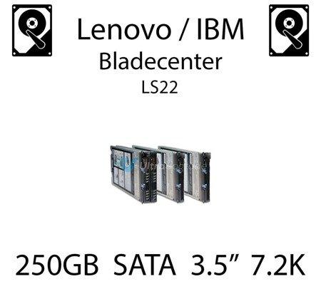"250GB 3.5"" dedykowany dysk serwerowy SATA do serwera Lenovo / IBM Bladecenter LS22, HDD Enterprise 7.2k, 300MB/s - 43W7750"