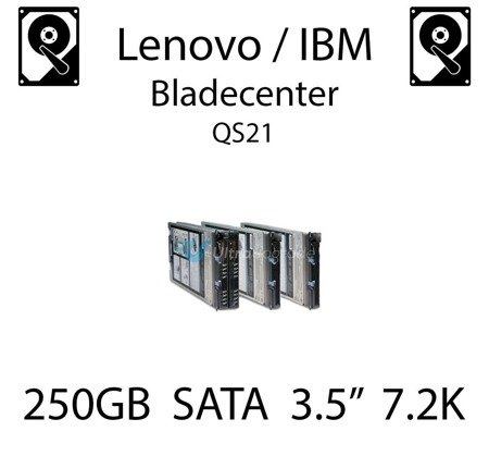 "250GB 3.5"" dedykowany dysk serwerowy SATA do serwera Lenovo / IBM Bladecenter QS21, HDD Enterprise 7.2k, 300MB/s - 43W7750"